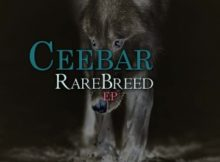 Ceebar – RareBreed EP Ceebar – The Marine (AfroTech Mix)