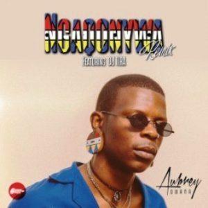 Aubrey Qwana Ngaqonywa Mp3 Download.