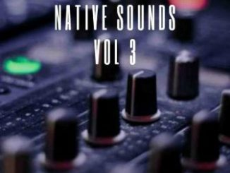 Bongs Da Vick – Native Sounds Vol. 3 Mix