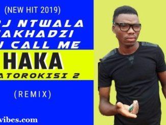 Haka Matorokisi Part 2 – Dj ntwala & Dj Call Me ft Makhadzi (Remix)