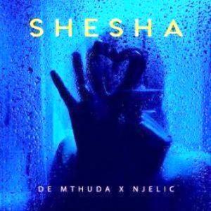 De Mthuda & Njelic – Shesha