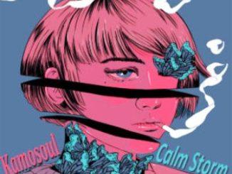 Kamosoul – Calm Storm EP