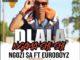 Ngozi SA Feat. Euroboyz – Dlala Ngama Shi Shi