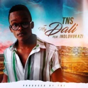 TNS – My Dali Ft. Indlovukazi (Techno Bros & House Villains Bootleg)