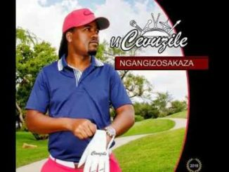 Cevuzile – Ngizobaxolela Mp3 Download