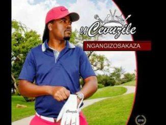 Cevuzile – Ngizobaxolela Mp3 Download