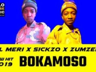 Lil Meri – Bokamoso ft. Sickzo & Zumzero