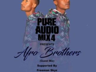 Afro Brotherz – Pure Audio Mix 4