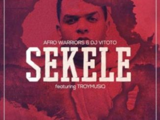 Afro Warriors & Dj Vitoto – Sekele Ft. Troymusiq