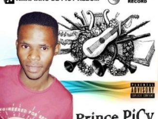 Prince PiCy – Amapiano De PiCy Album