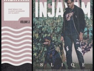 DOWNLOAD ALBUM: DJ Sliqe – Injayam Vol. 2