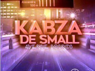 Kabza De Small Umgani Wa Mbali