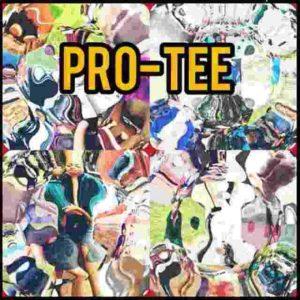 Pro-Tee X biblos & Zimbali - Ngizwile (radioedit)