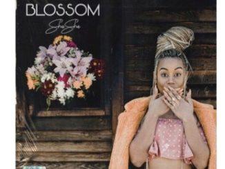 Sha Sha – Blossom (EP Tracklist) Download