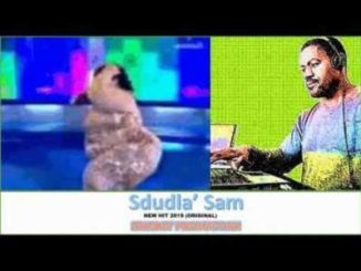 Siwi Boy – Sdludla Sam (Original)