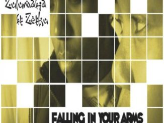 ZuluMafia ft Zethu - Falling In Your Arms