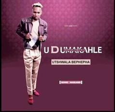 dumakahle new album 2019