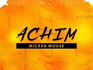 Achim The DJ – Mickey Mouse