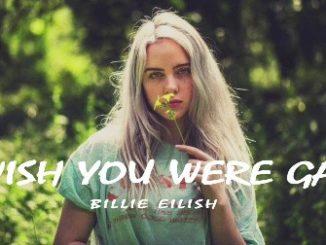 Billie Eilish – Wish You Were Gay Lyrics