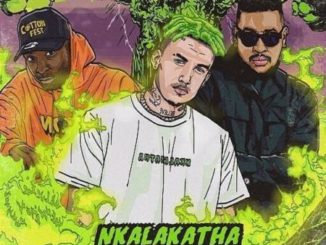 Costa Titch – Nkalakatha (Remix) Ft. AKA, Riky Rick