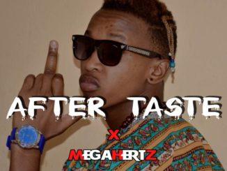 MegaHertz – After Taste