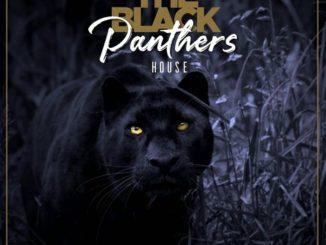 Pro-Tee & Biblos – Black panthers House
