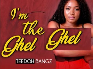 Teedoh Bangz – Gqom Love Story (Original Mix)
