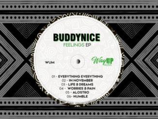 Buddynice – Feelings EP