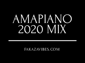 Lil Mo – African Cry ft Seshobala Amapiano MIX 2020 Amapiano 2020 Mix Phoyisa, Road to Vigro, 2point1 - Batho Bana