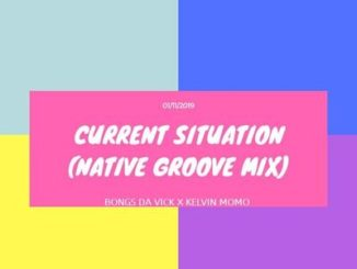 Bongs Da Vick & Kelvin Momo – Current Situation (Native Groove Mix)