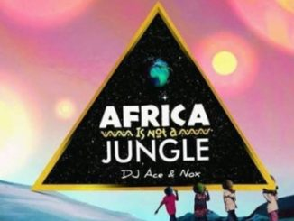 DJ Ace & Real Nox – Africa is not a Jungle