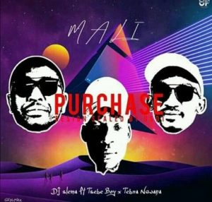 DJ Slema – Mali Ft. Tsebe Boy & Tebza Ngwana