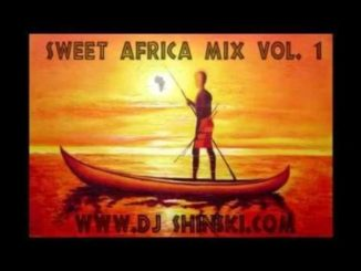 Dj Shinski – Sweet Africa Mix