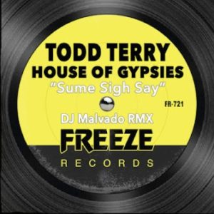 Todd Terry & House Of Gypsies – Sume Sigh Say (DJ Malvado RMX)