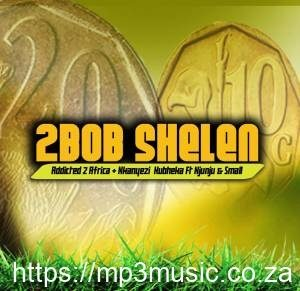Addicted 2 Africa & Nkanyezi Kubheka Feat. Njunju x Small – 2Bob Shelen