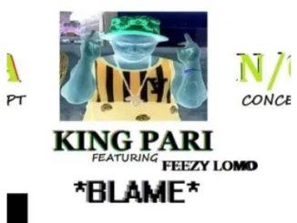 King Pari – Blame (Ft. Feezy Lomo)