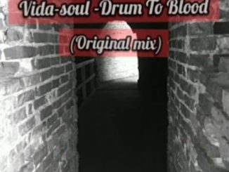 Vida-soul – Drum To Blood