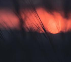 Agoria – Wish Me Luck (Mozaïk Remix)