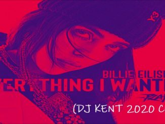 Billie Eilish – Everything I Wanted (DJ Kent 2020 Cut)