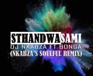 DJ Nkabza – Sthandwa Sami Ft. Bonga (Nkabza's Soulful Remix)