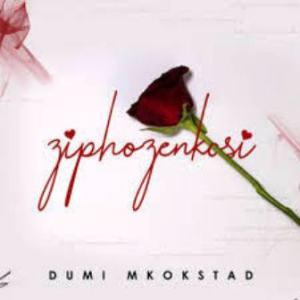 Dumi Mkokstad – Ziphozenkosi