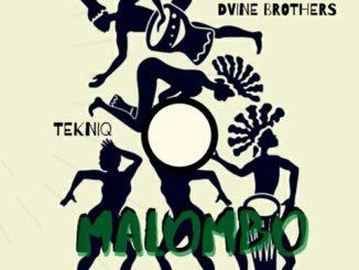 Tekniq & Dvine Brothers – Malombo