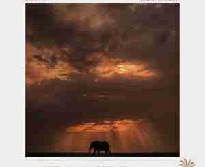 Dylan-S, Foozak & Awen – The Storm (Caiiro Remix)