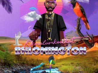 Okmalumkoolkat – Bhlomington – EP