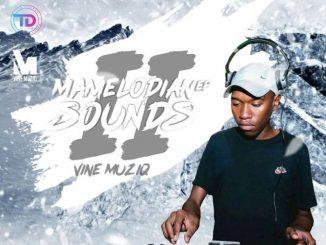 EP: Vine Muziq – Mamelodian Sounds