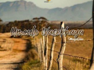 Muziqal Tone – Ihlaya Nguwe Ft. Nobantu Vilakazi