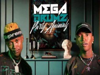 Megadrumz – Ndize Ft. Mangoli & Zama Radebe