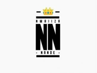 Nwaiiza Nande – Gundi no Mazwi (Terra Mos Vox)