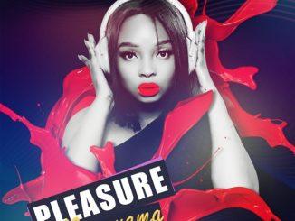 Pleasure – Ngonyama Ft. Zipho Thusi