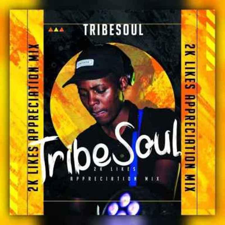 TribeSoul, Bido Vega & Nkulee 501 – Badimo (Amadlozi),TribeSoul – 2K Appreciation Mixtape